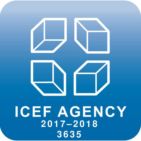 LOGO ICEF 2017_18